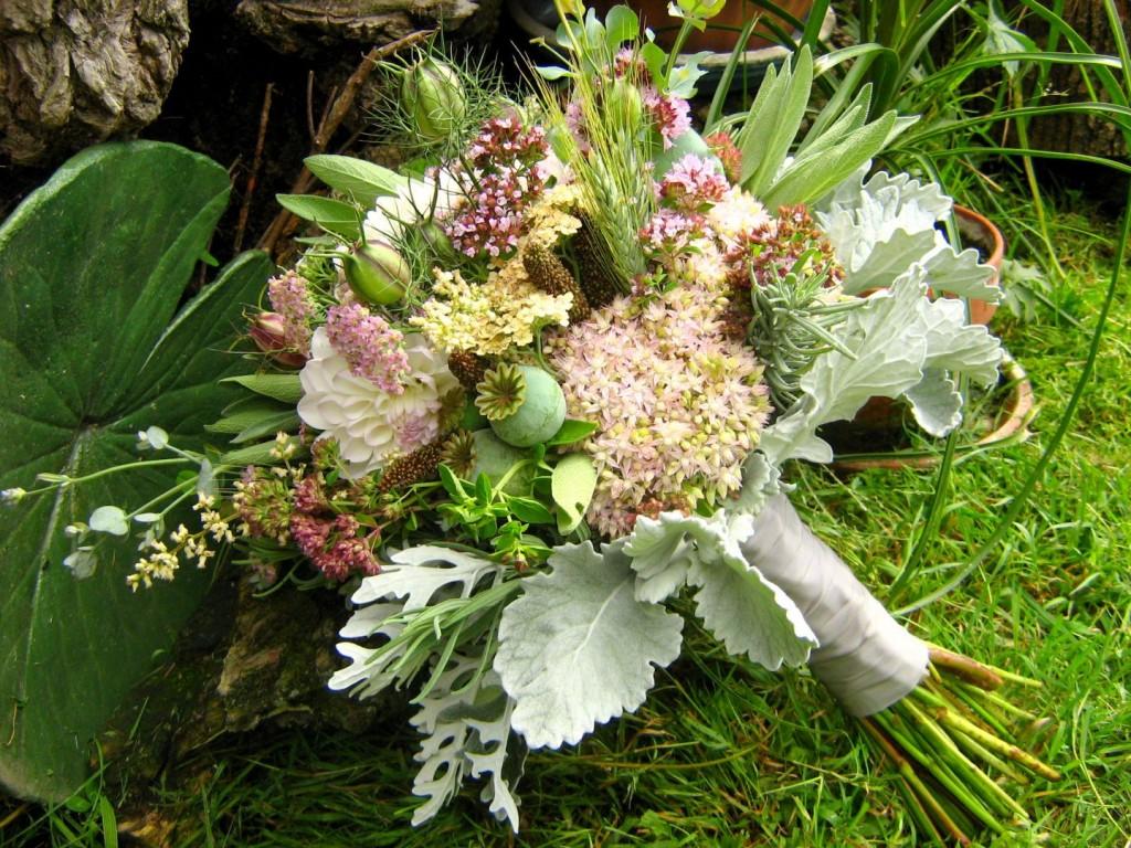 Fall Flowers & Herbs