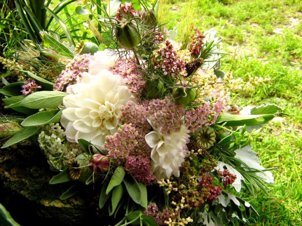 Fall Flowers & Herbs – Flowers by Olga