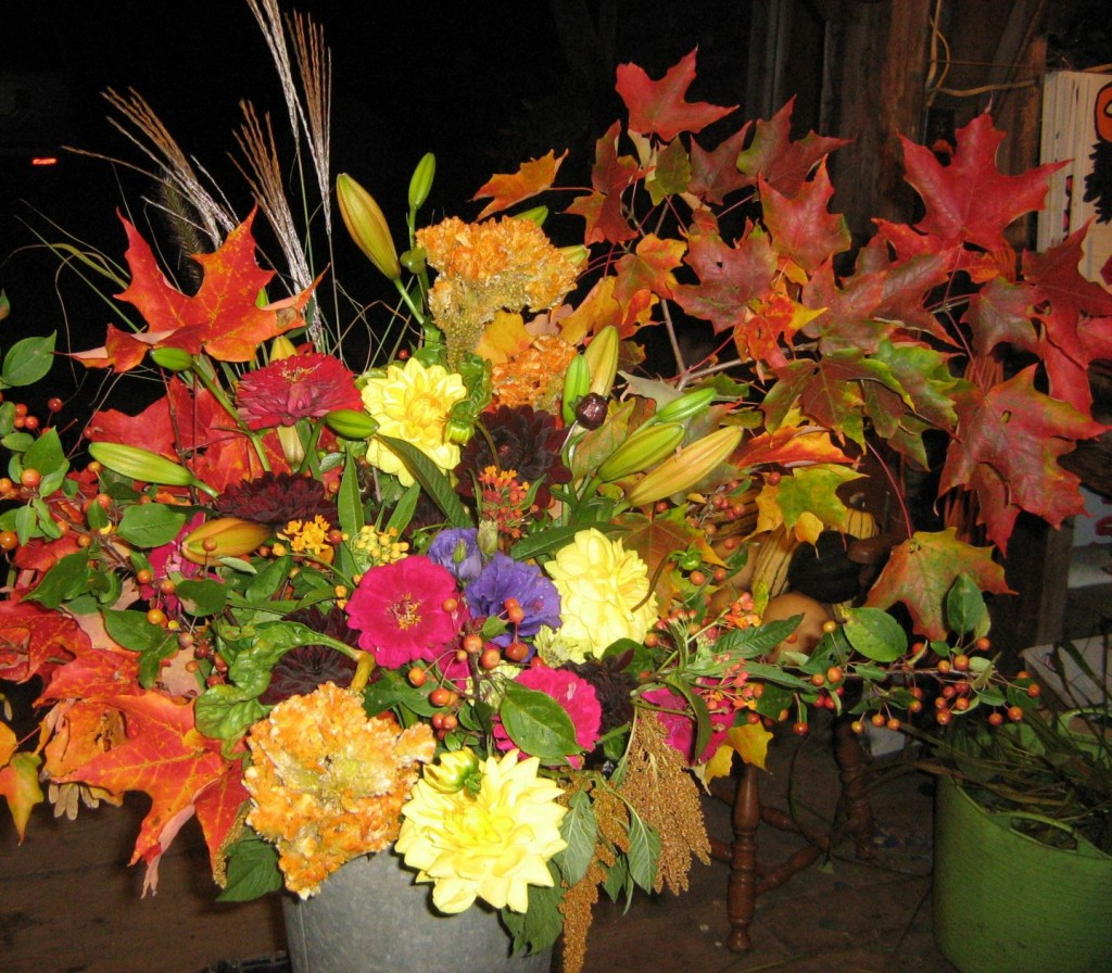 Fall bouquets fun in the flower barn flowers by olga not to mention this is a great time of year to get out and enjoy the fall foliage and grab some pumpkins to carve or some zucchini for that homemade bread izmirmasajfo Choice Image