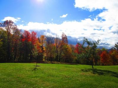 1713Wild West Meets Vermont