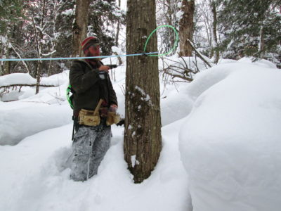 1832Tapping in…to our local Sugar Bush that is!
